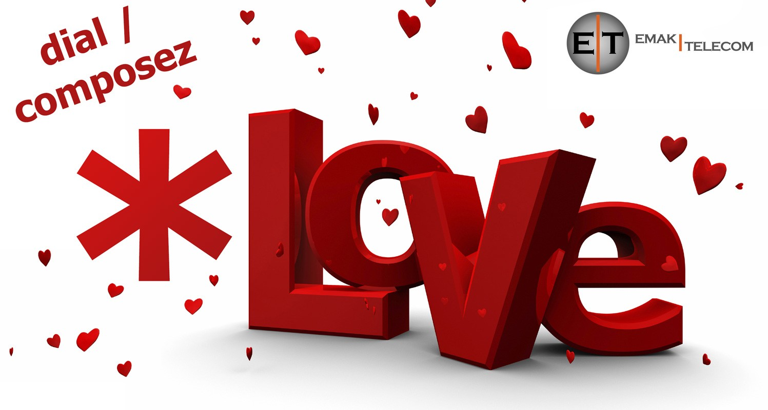 {:en}Dial *LOVE (*5683) on Valentine's Day{:}{:fr}Composez *LOVE (5683) pour Saint-Valentin{:} 1